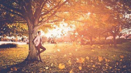 legendes-automne-accueil