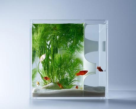 hakura-misawa-aquarium-design-waterscape