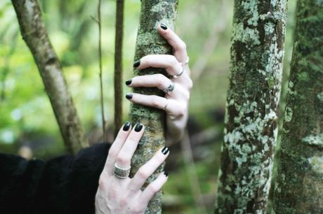 rings-in-the-woods