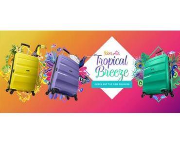 Pourquoi choisir une valise colorée ?